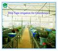 Tropf-band china/dayu marke hochwertige tropf band Bewässerung