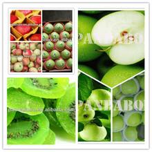 green sweet fresh apple