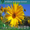 Jerusalem Artichoke Botanical Extract 10:1 in 3W GMP Factory