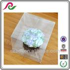 2014 new custom cheap Clear Plastic Single Cupcake Box