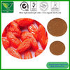 Natural Chinese Barary Wolfberry Goji berry Extract