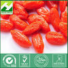 High quality chinese wolfberry extract/wolfberry goji extract