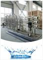 Embouteillée 5t/h unités de traitement d'eau avec ro