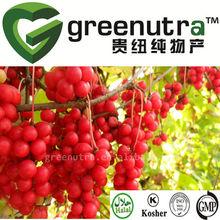 schisandra chinensis extract powder / fructus schisandrae p.e./ schisandrin