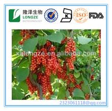 Fructus Schisandrae/Schisandra Chinensis Extract
