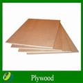 Fornecer 4*8ft 18mm espessura marinhos bintangor compensada para o recipiente de madeira compensada pisos
