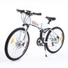 Folding Electric Mountain Bike TDE06Z NEW Litium Battery IN FRAME