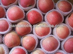 2013 factory direct sale plastic fruit tray red star apple fruit