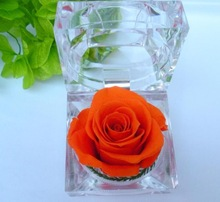 Preserved rose flower with any sizes,colors and designs are available Wedding Gift