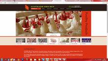 Food & Beverages based Website design