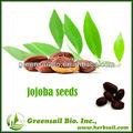 بذور الجوجوبا 2013 المحصول الجديد للبيع