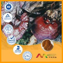 GMP&ISO Reishi Mushroom Extract Triterpene