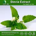 Gmp& iso de qualité alimentaire naturel extrait de stevia 90% stevia stévioside de sucre en poudre