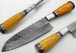 "11.00"" Custom Made Beautiful Damascus Steel Chef Kitchen Knife (AA-0198-10)"