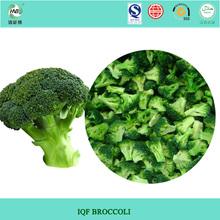 China new Crop Frozen broccoli