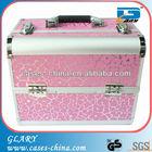 ALuminum Eyelash Cosmetic Kit