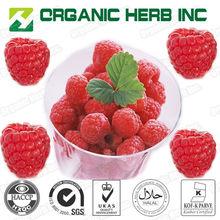 hot selling Raspberry extract Fructus Rubi P.E.