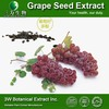 100% Natural Grape Seeds Extract Powder Grape Seed Extract Manufacturer Grape Seed P.E.