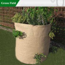 Green Field Natural Jute Herb Planter