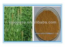 CAS NO.:1343-98-2 Silica 7% by UV Horsetail Extract powder Equistum Arvense L