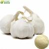 garlic powder/garlic extract feed additive