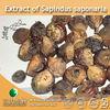 100% Natural Extract of Sapindus saponaria (Soapnut Saponins 40%, 70%)