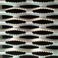 Metal perfurado/sparying plásticos placa do patim de preço de fábrica duráveis redes tem( iso9001/bv certificado)