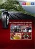Hades tyre manufactoryer supplies TBR&PCR car tyres