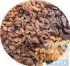 Red Raisins, Dark Brown Raisins, Golden Raisins