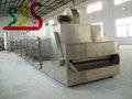 cintura asciugatrice in continua produzione di massa di verdure disidratate
