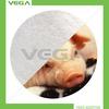 vitamin B6/pyrodoxine hcl/made in China vitamin B6/alibaba express/feed additives vitamin B6/poultry vitamin B6