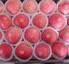 2014 fuji fresh plum apple pome fruit