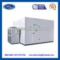 bitzer compressor freezer quarto
