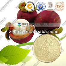 Mangosteen Extract/10%-90% Mangostin