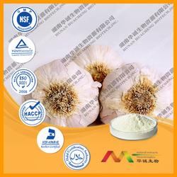 ISO/KOSHER/HACCP/cGMP Best Price Garlic P.E.
