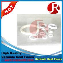 Ceramic seal face pump carbon