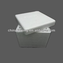 Styrofoam Insulated Cooler Shipping Container With Low Price