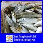 BQF Bulk Pack Sardine Fish