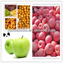 provide the best quality fuji and qinguan apple