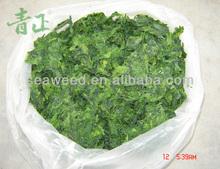 Wholesale ulva Lactuca