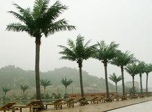 artificial palm trees sale,plastic palm tree,artificial outdoor palm trees on sale