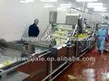 frutas máquina de lavar bolha
