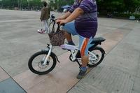 Leadway Green travel off road monkey bike(W1-1050)