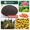Shenyang Huminrich Potassium Humate Improves Blossom and Fruit Set