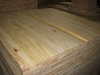 supply 32mm pine wood finger jointed boards
