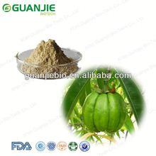 Garcinia Combogia 50%, 60%, 70% HCA / Garcinia Combogia Hydroxycitric Acid Powder/ Natural Garcinia Cambogia Extract
