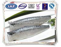 Norway Mackerel Fillet(Scomber Scombrus)