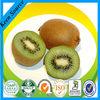 Natural SD Spray dried Chinese gooseberry powder-Fruit powder- Actinidia sinensis powder