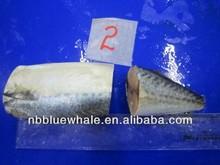 dried mackerel fish scomber japonicus