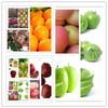 Hot sale green apple bulk apples